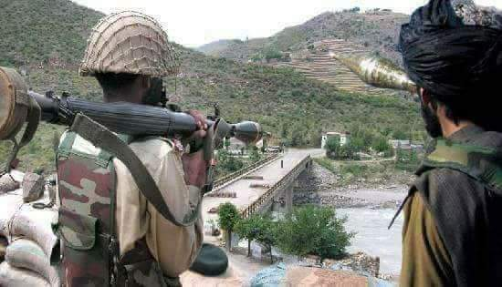Pakistan is Harboring Terrorists and arming them. Taliban Terrorists can be seen fighting along with Pakistan Army.