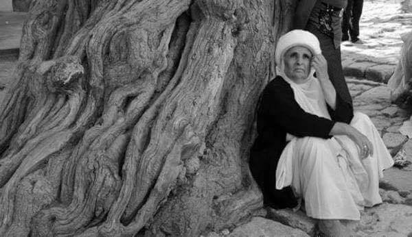 A Yazidi old woman sitting under a tree