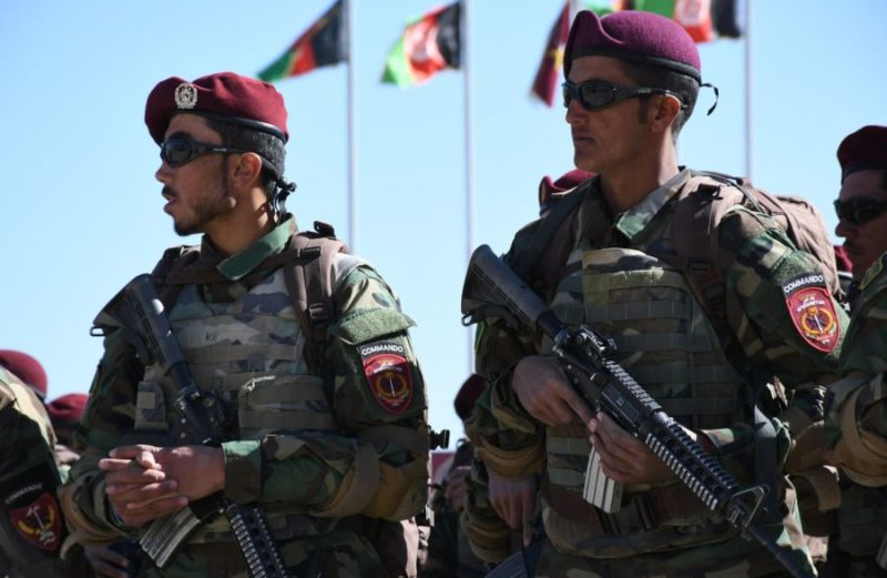 Hundreds of new commandos join Afghan military