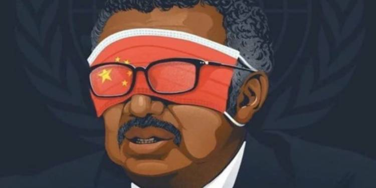 Tedros - China's Lap Dog?