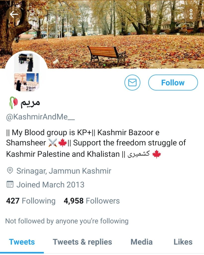 India Battles with Terrorists From Pakistan: Some Radical Handles celebrating the Terrorist Attack